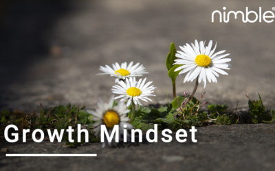 Growth Mindset Course